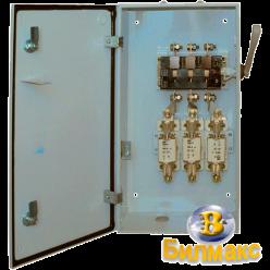 Ящик разрыва ЯРП-100Г с рубильником BILMAX и предохранителями на 100А, IP54