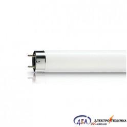 Лампа люм. TL-D 30w/54-765 G13 Ph